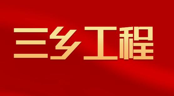 """大通落实""""三乡工程""""势头强劲"""